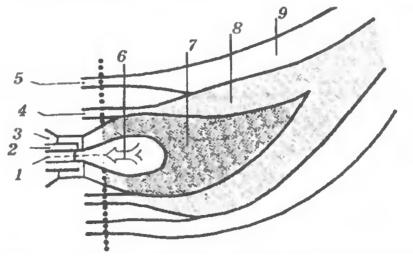 Факел малотоксичной горелки со ступенчатой подачей воздуха и топлива