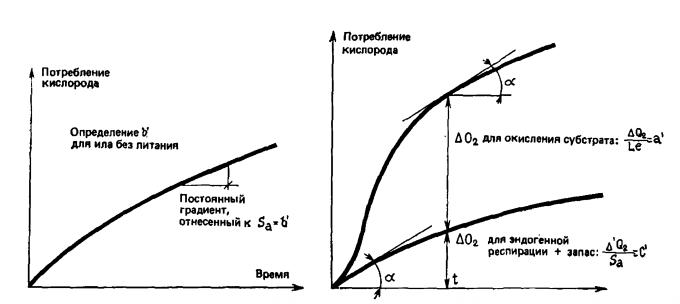 Метод Варбурга для определения респираторных параметров