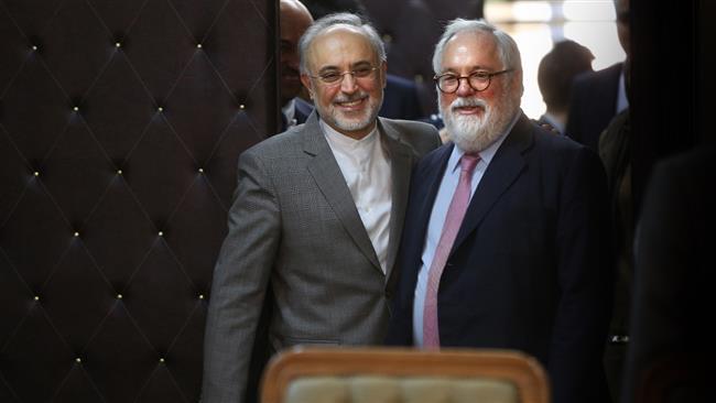 Действующий комиссар ЕС по климату и энергетики Мигель Ариас Каньете и Али Акбар Салехи, вице-президент Ирана и глава Организации по атомной энергии Ирана (ОАЭИ)